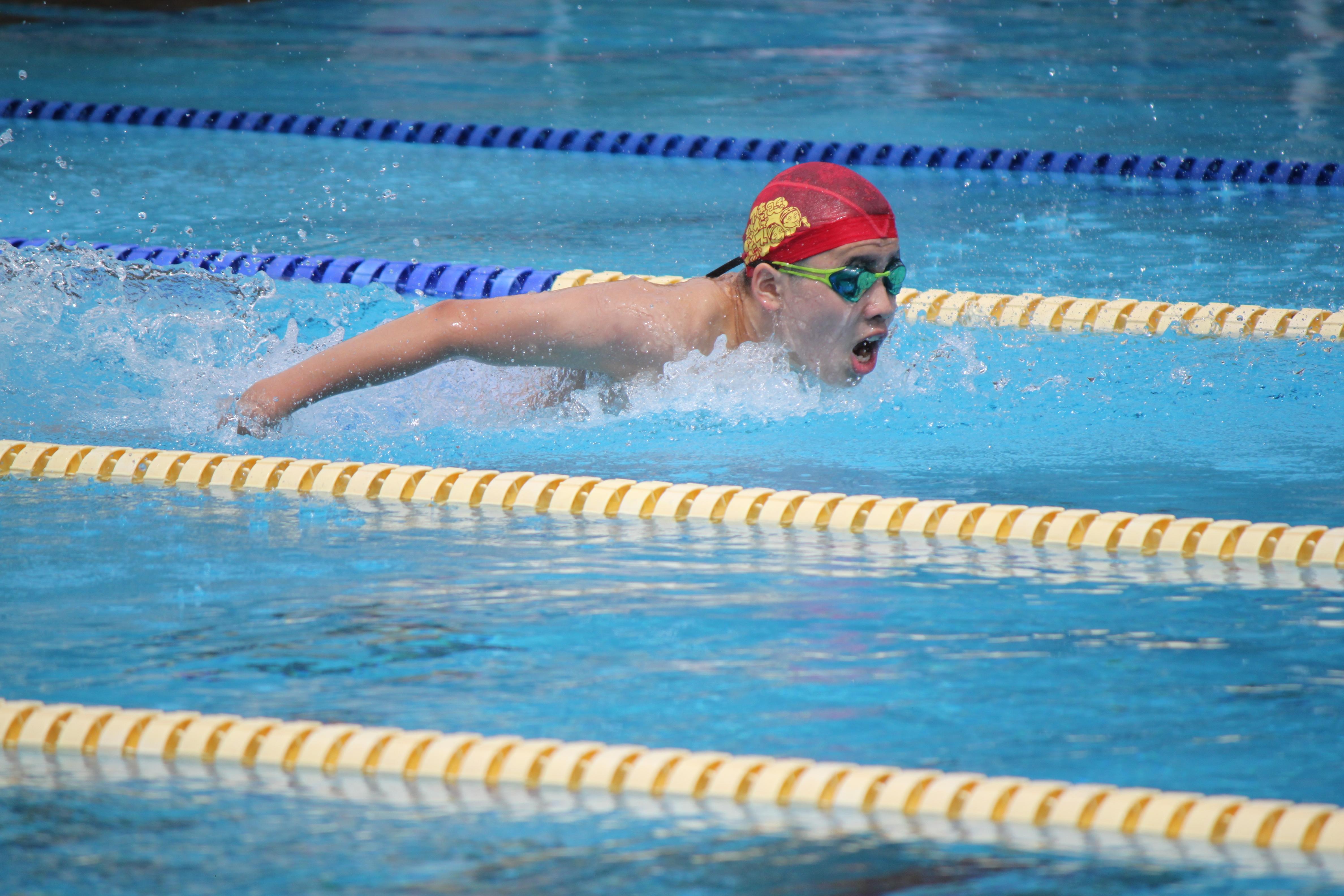水泳競技 (45)