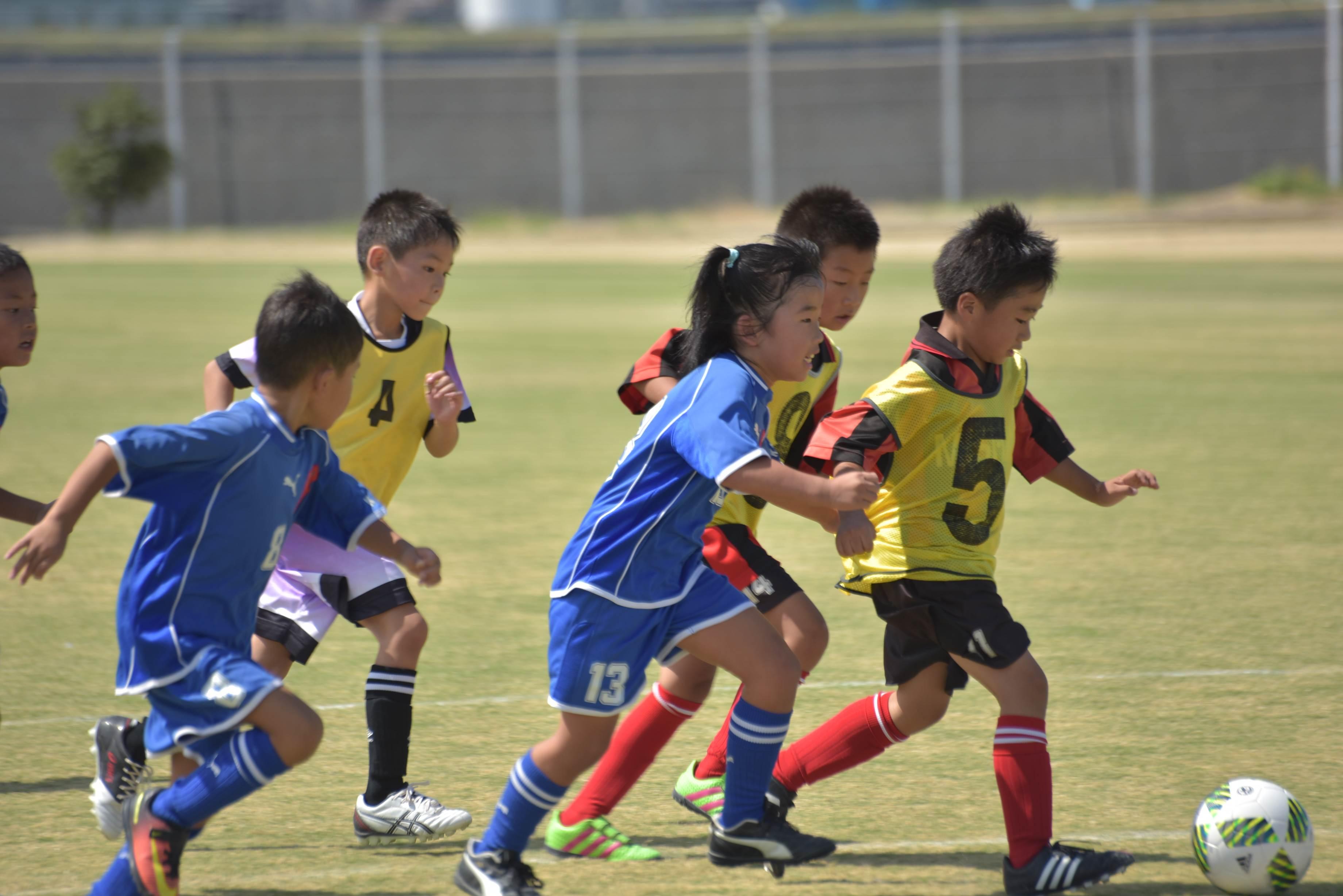 mini_soccer (639)
