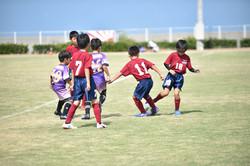 mini_soccer (263)