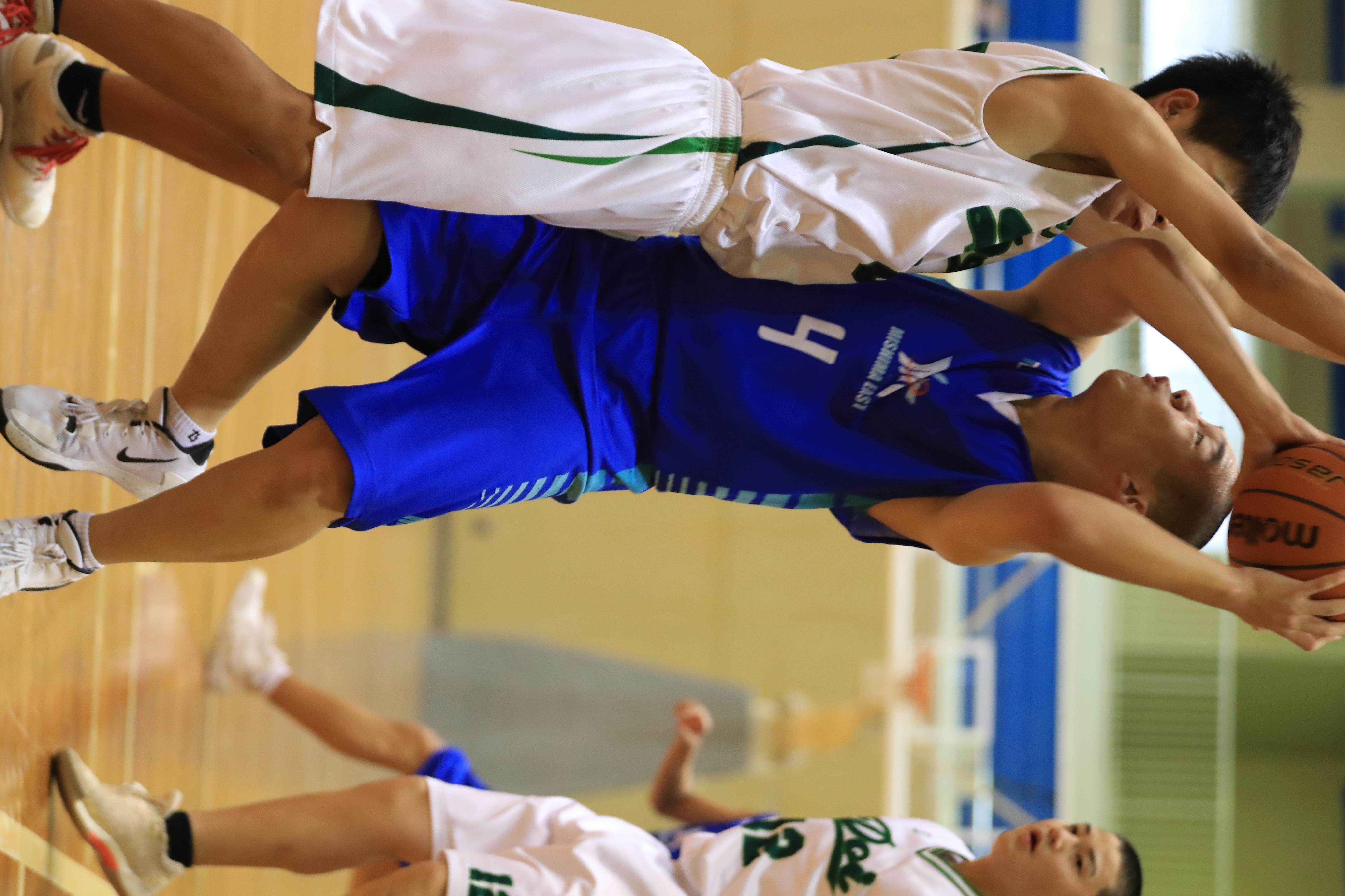 バスケット (755)