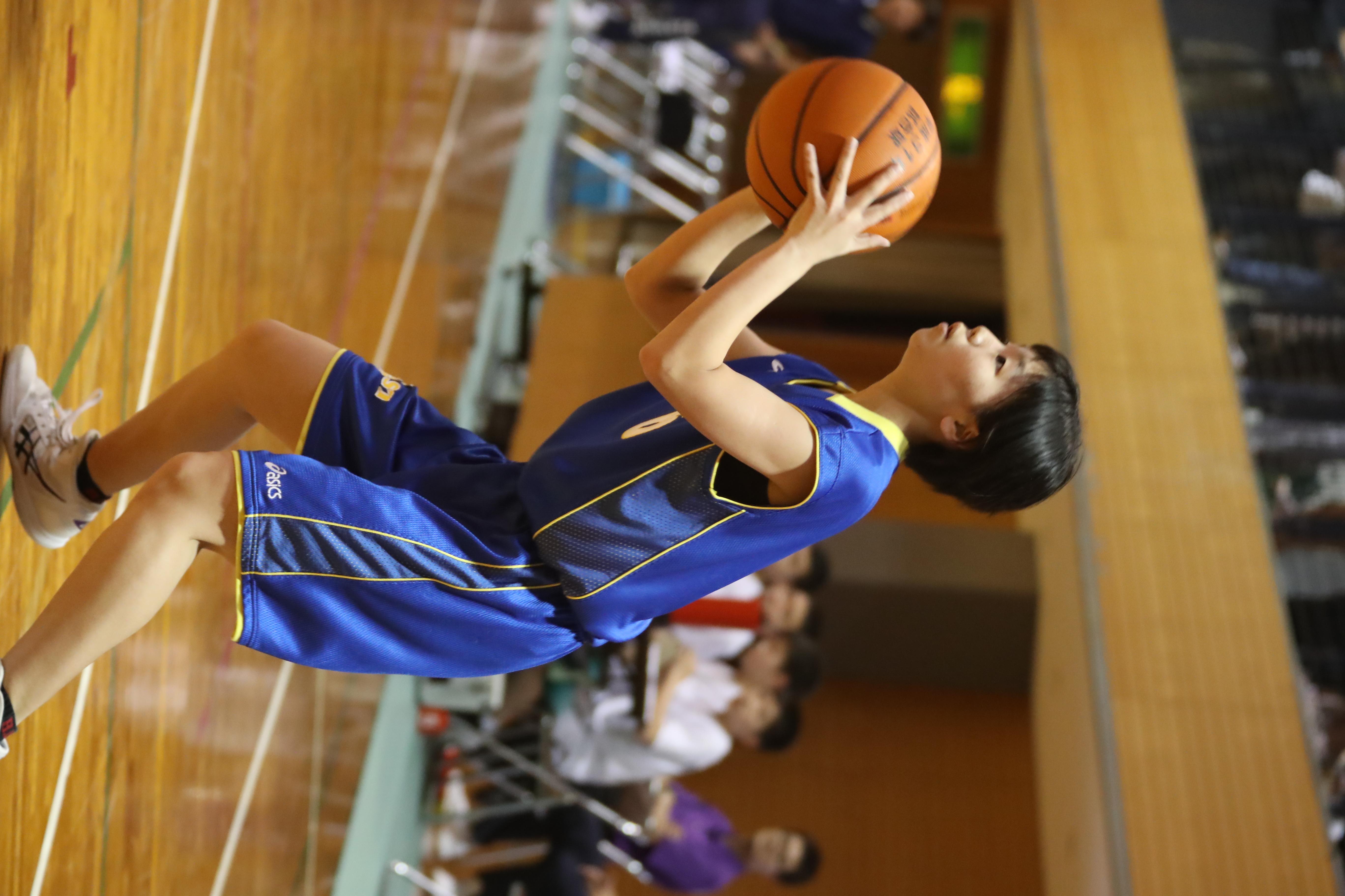 バスケット (268)