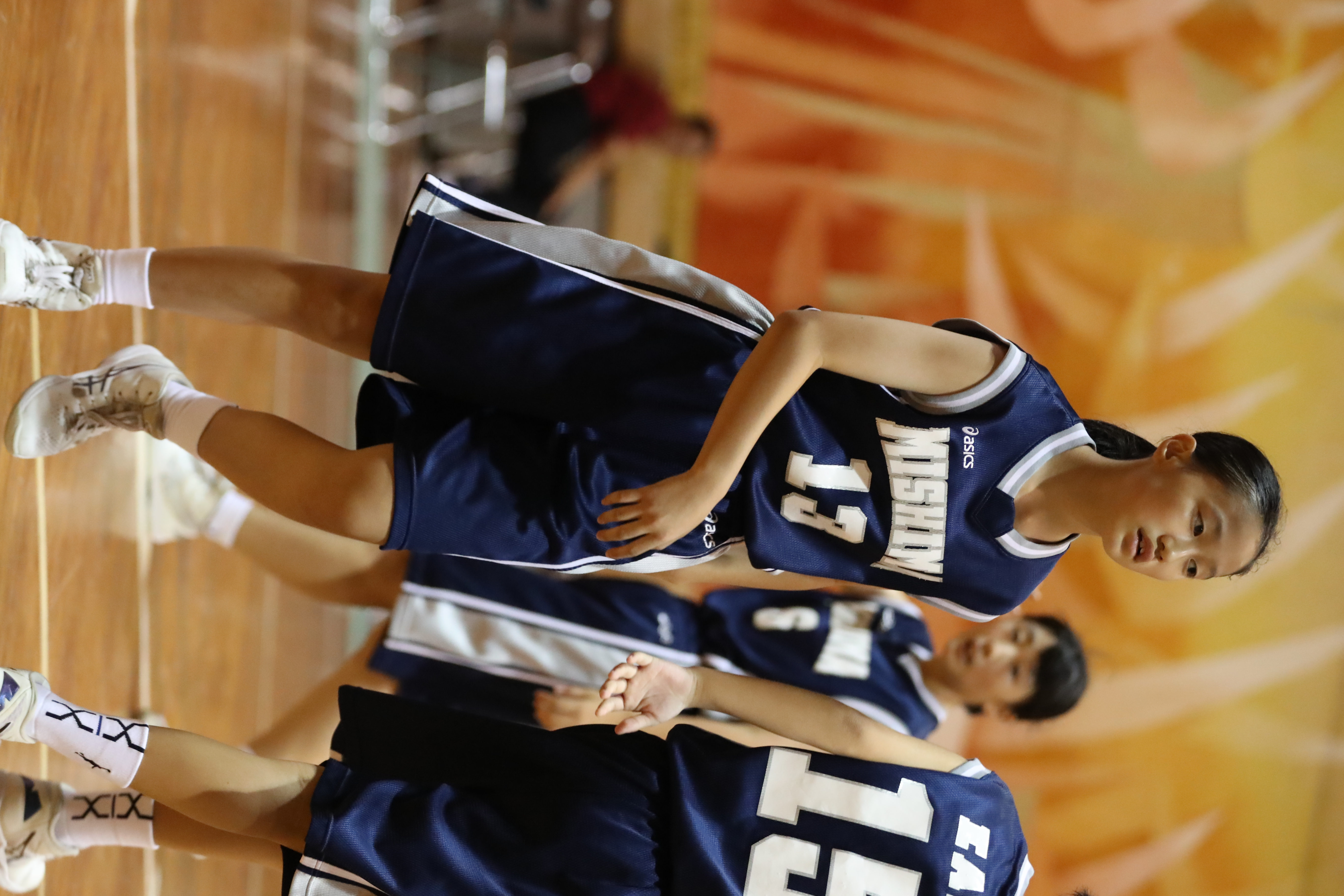 バスケット (228)