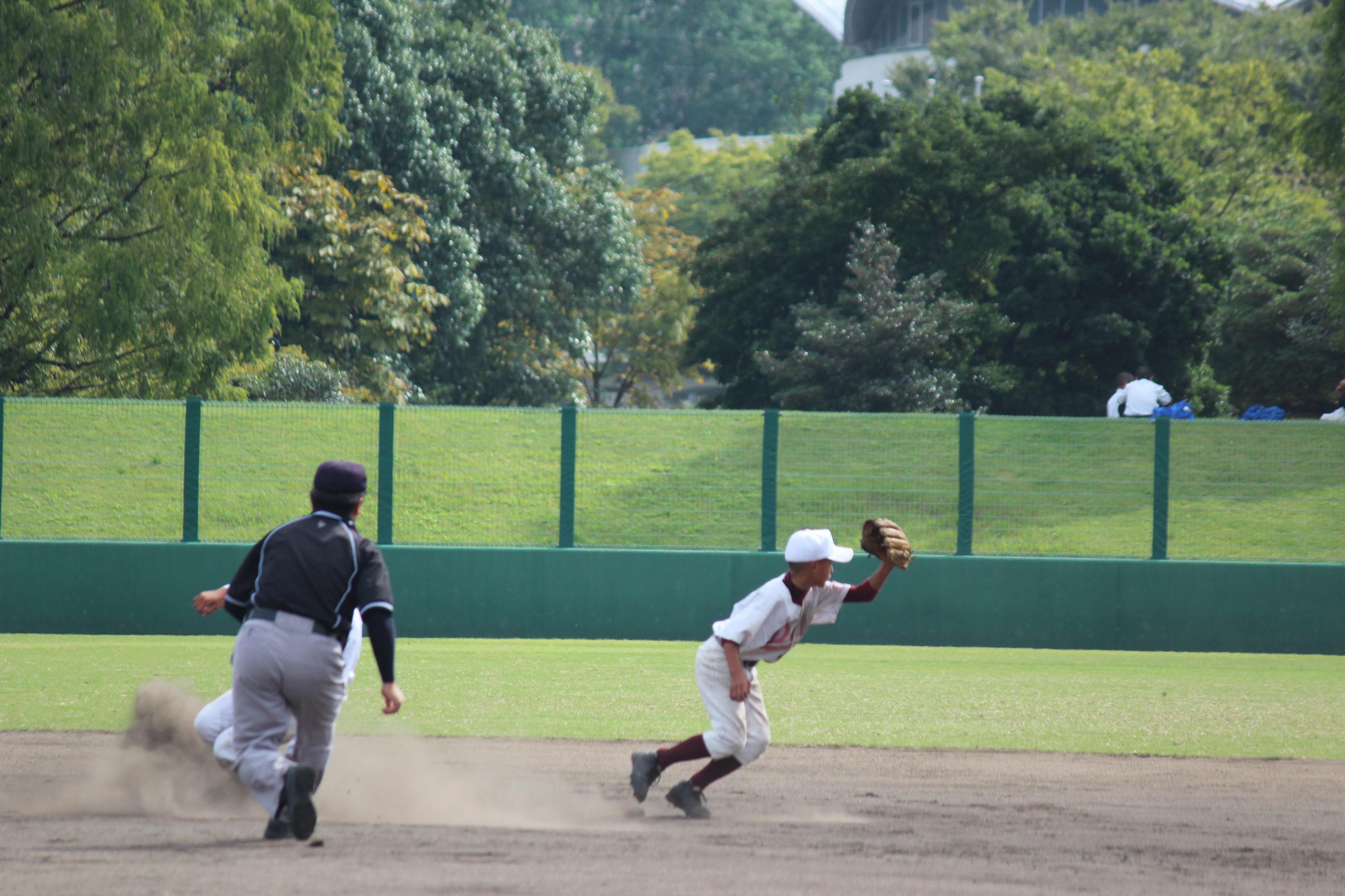 野球 (962)