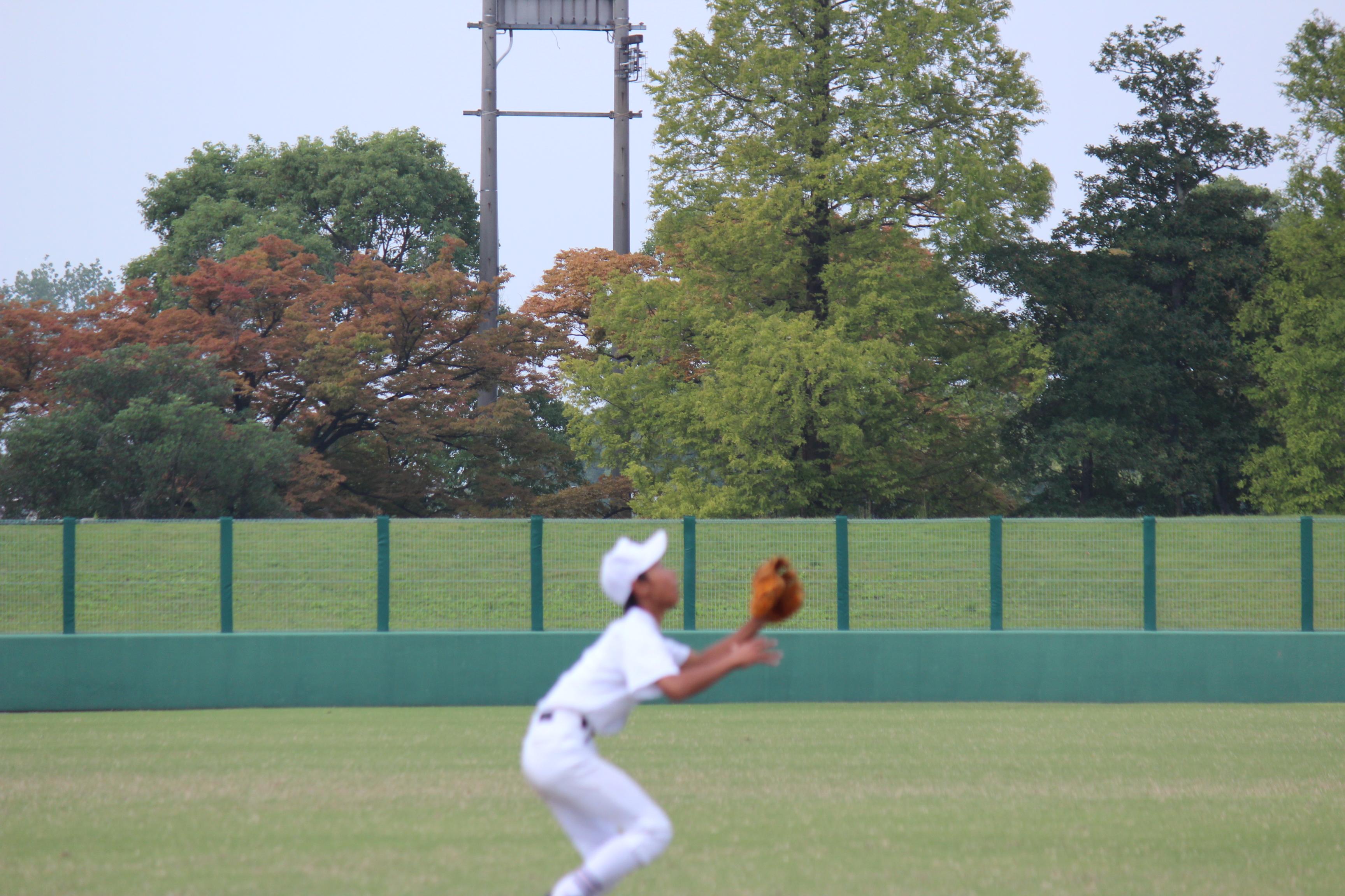 野球 (462)