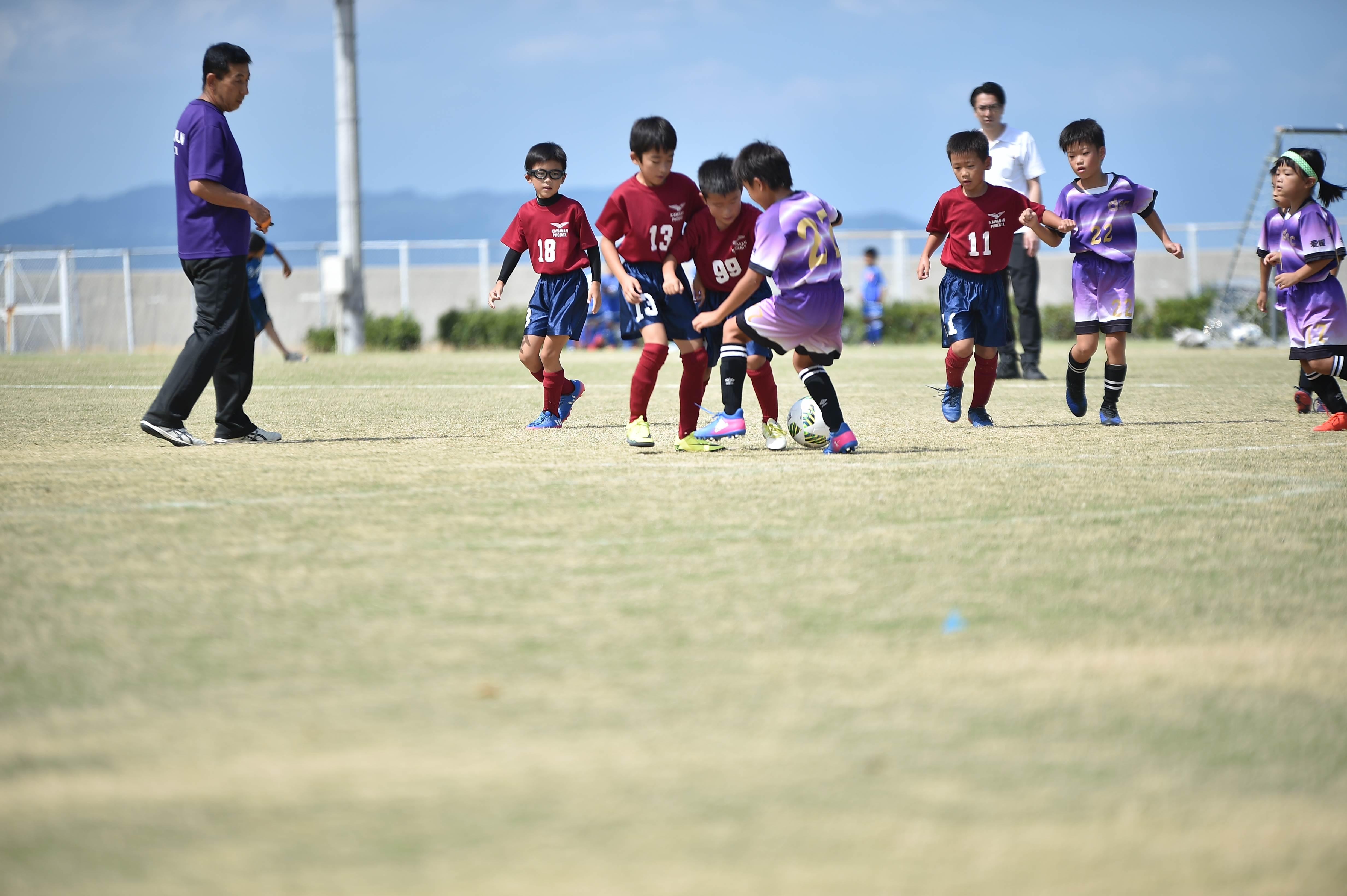 mini_soccer (298)