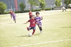 mini_soccer (586)