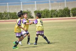mini_soccer (604)