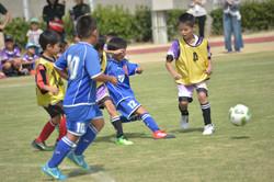 mini_soccer (607)