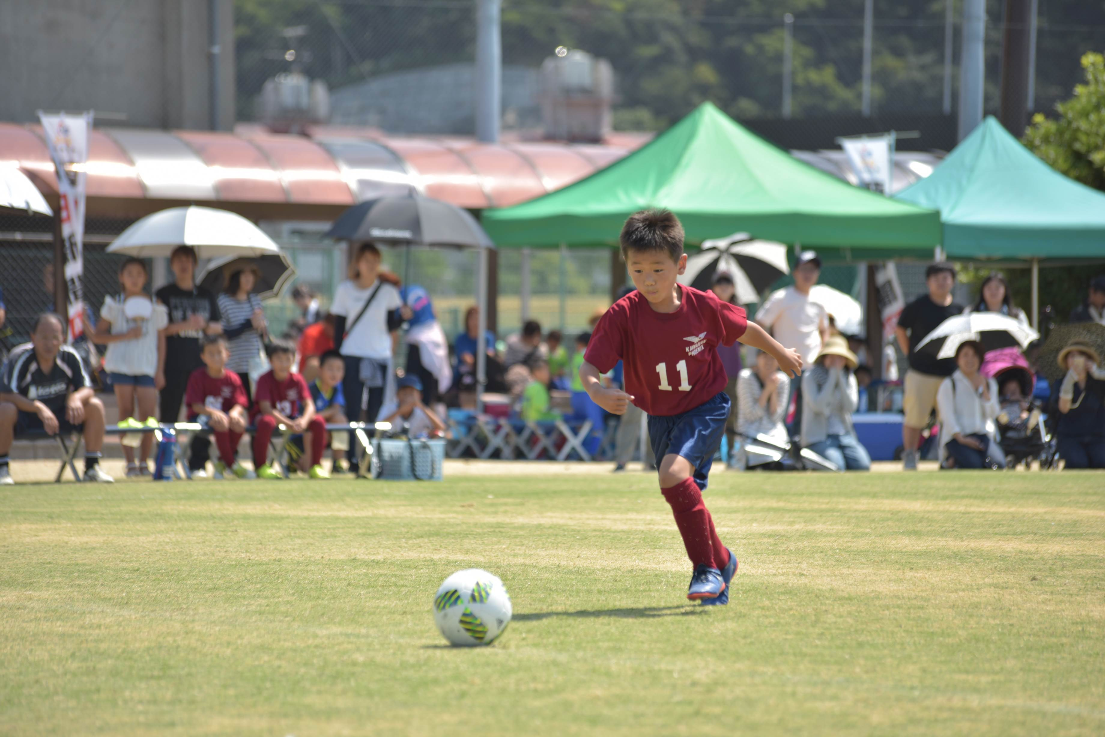 mini_soccer (663)