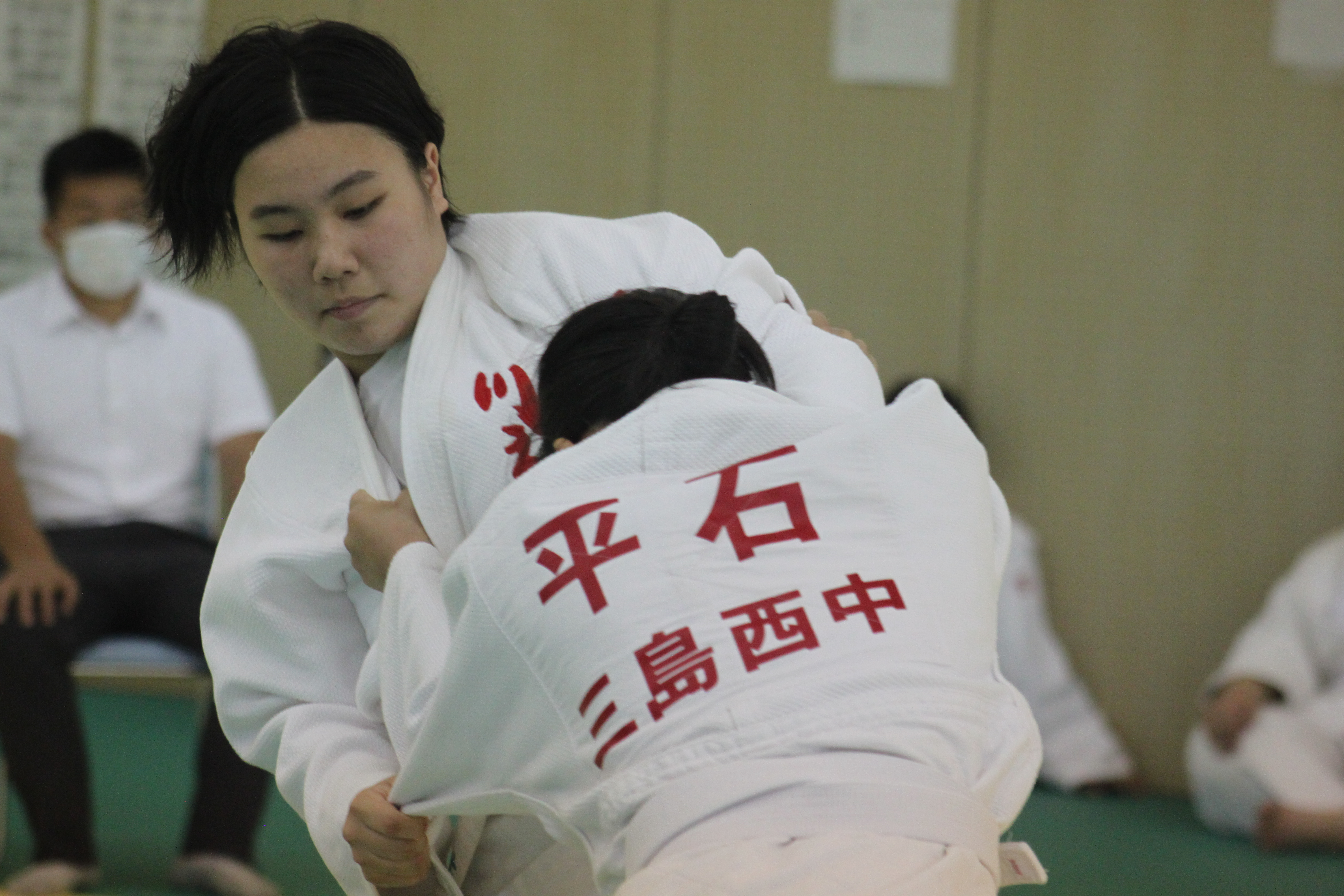 柔道 (101)