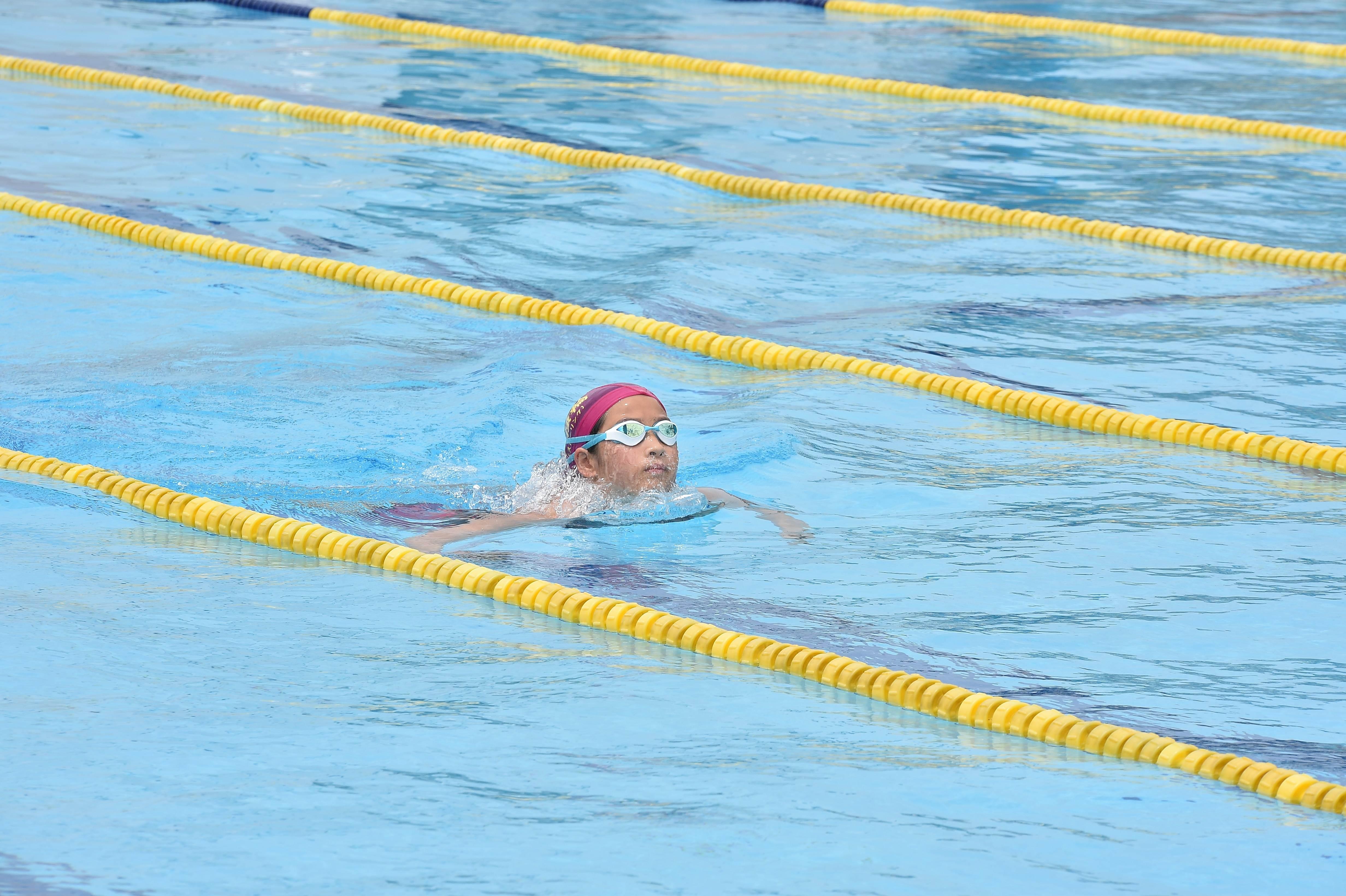 水泳 (48)