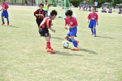 mini_soccer (158)