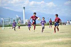 mini_soccer (284)