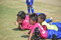 mini_soccer (449)