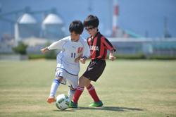 mini_soccer (384)