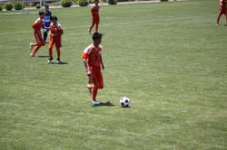 サッカー (805)