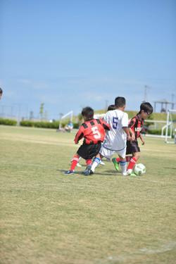 mini_soccer (349)