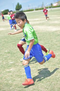 mini_soccer (463)