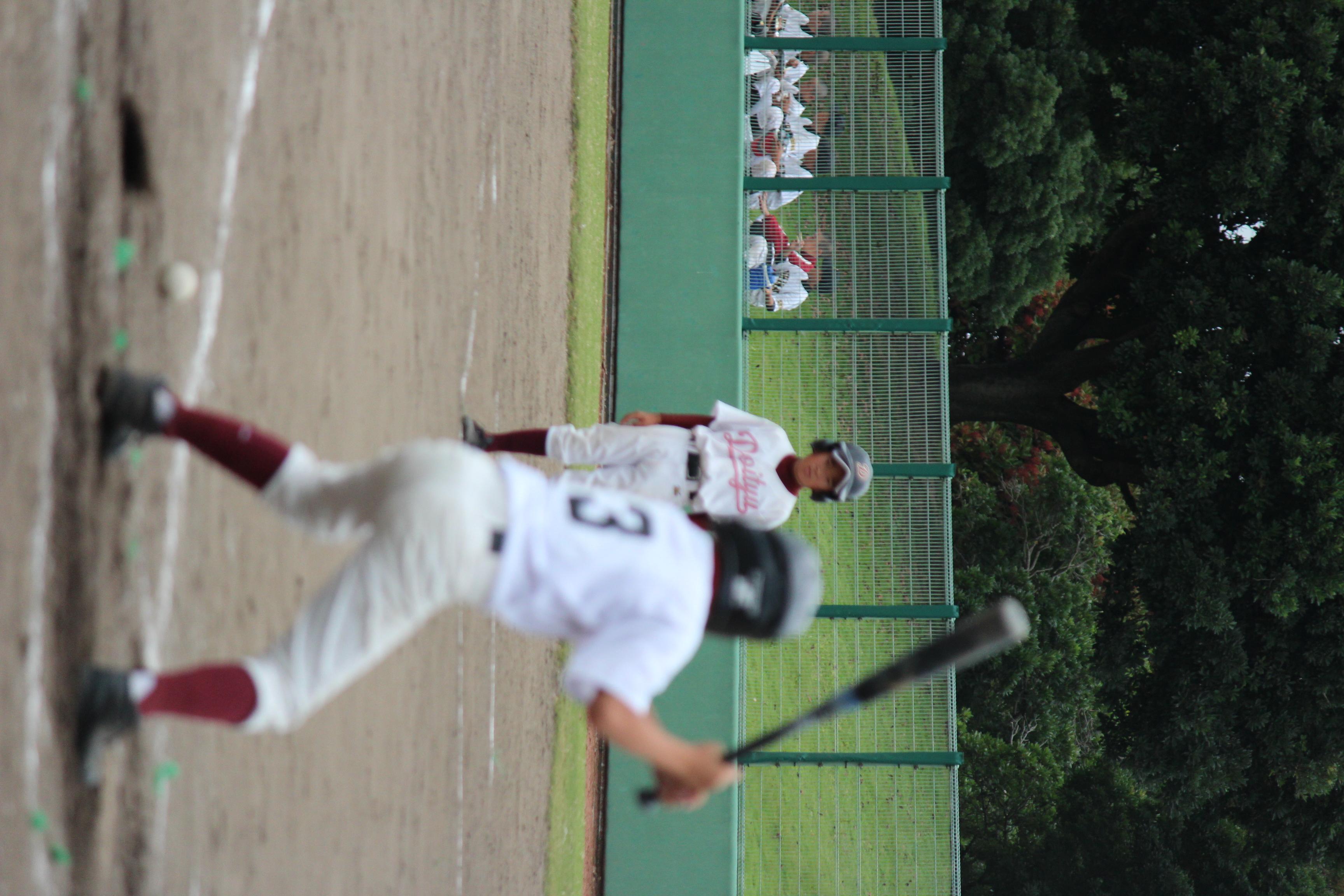 野球 (265)