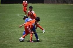 サッカー (491)