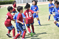 mini_soccer (514)