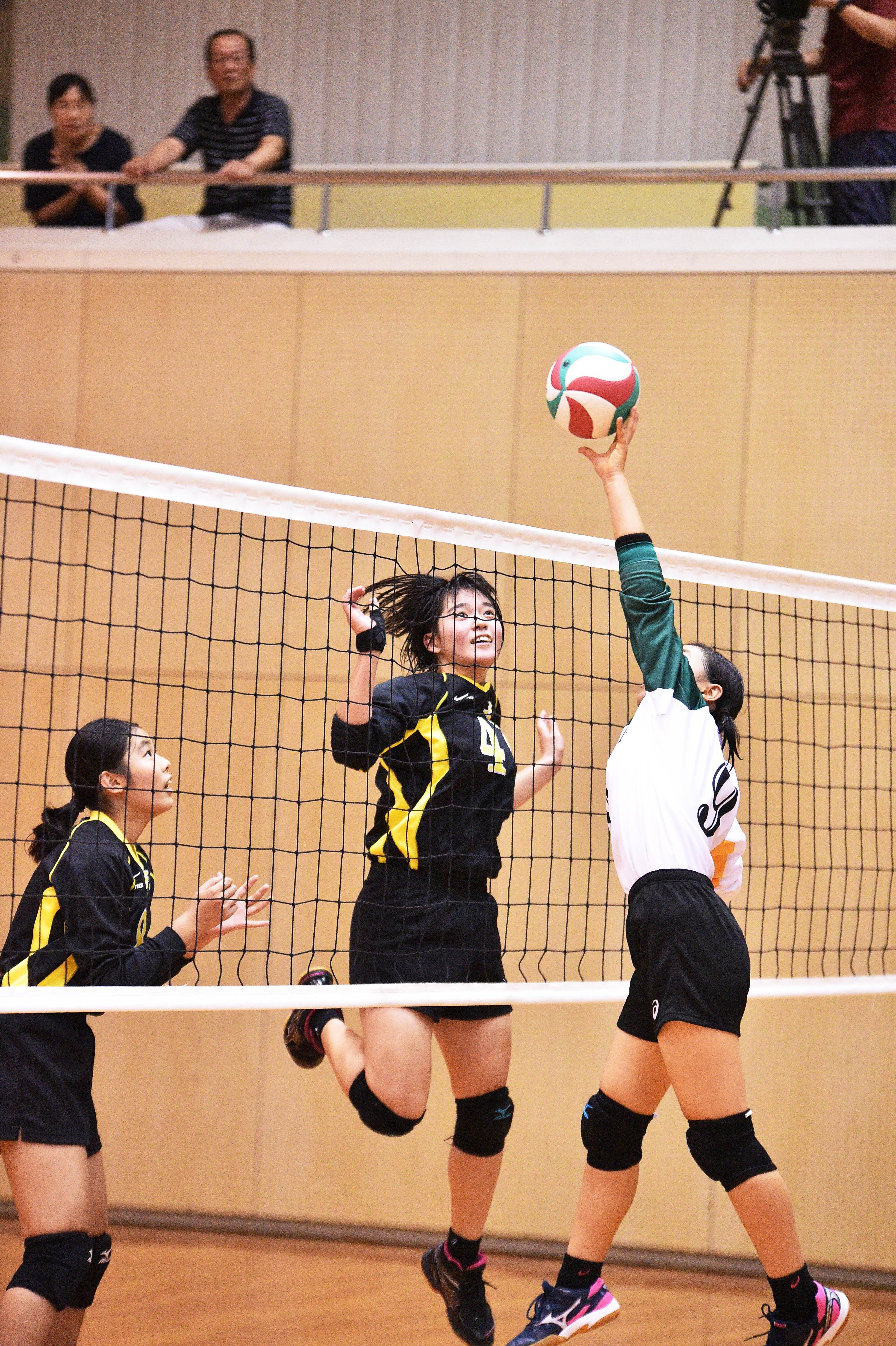 volleyball (41)