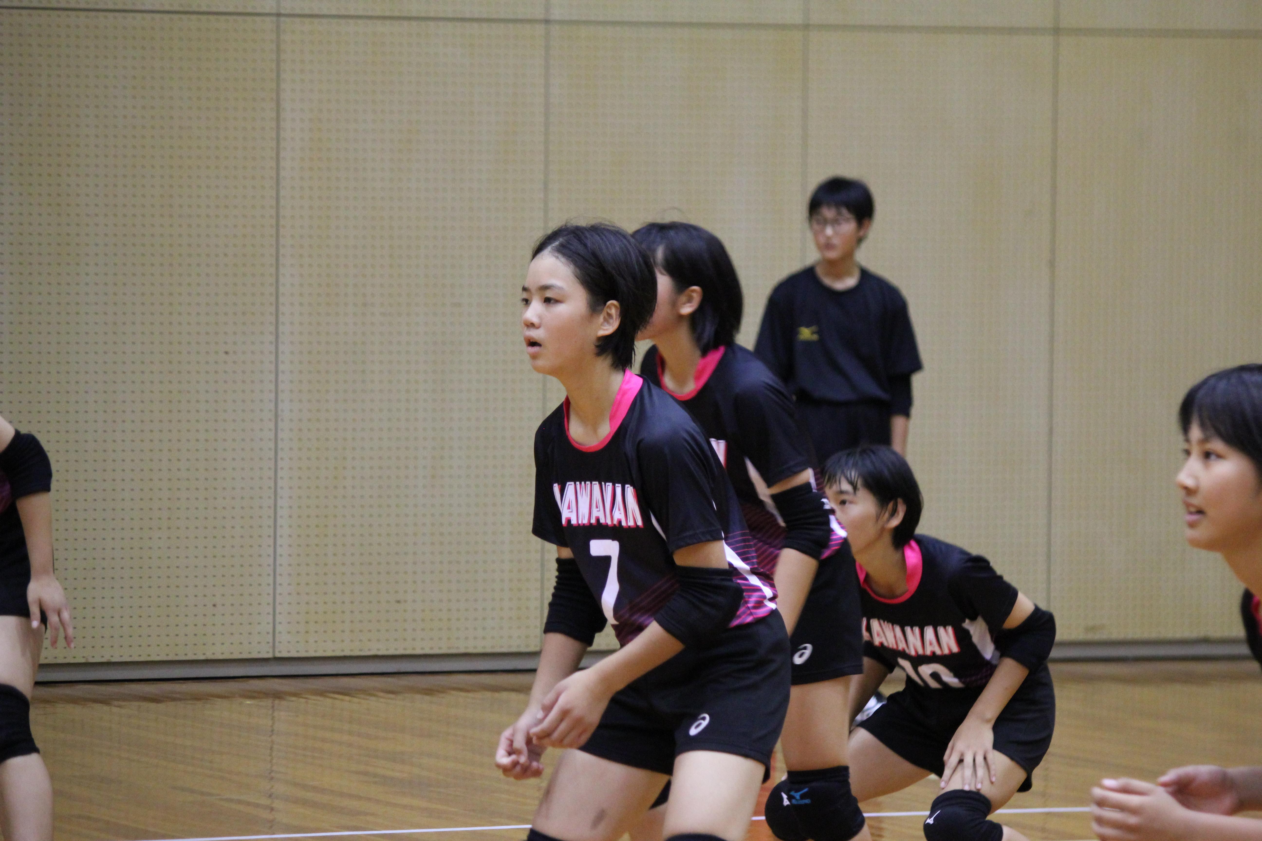バレーボール (330)
