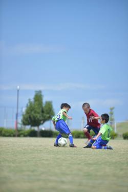 mini_soccer (419)
