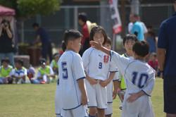 mini_soccer (598)
