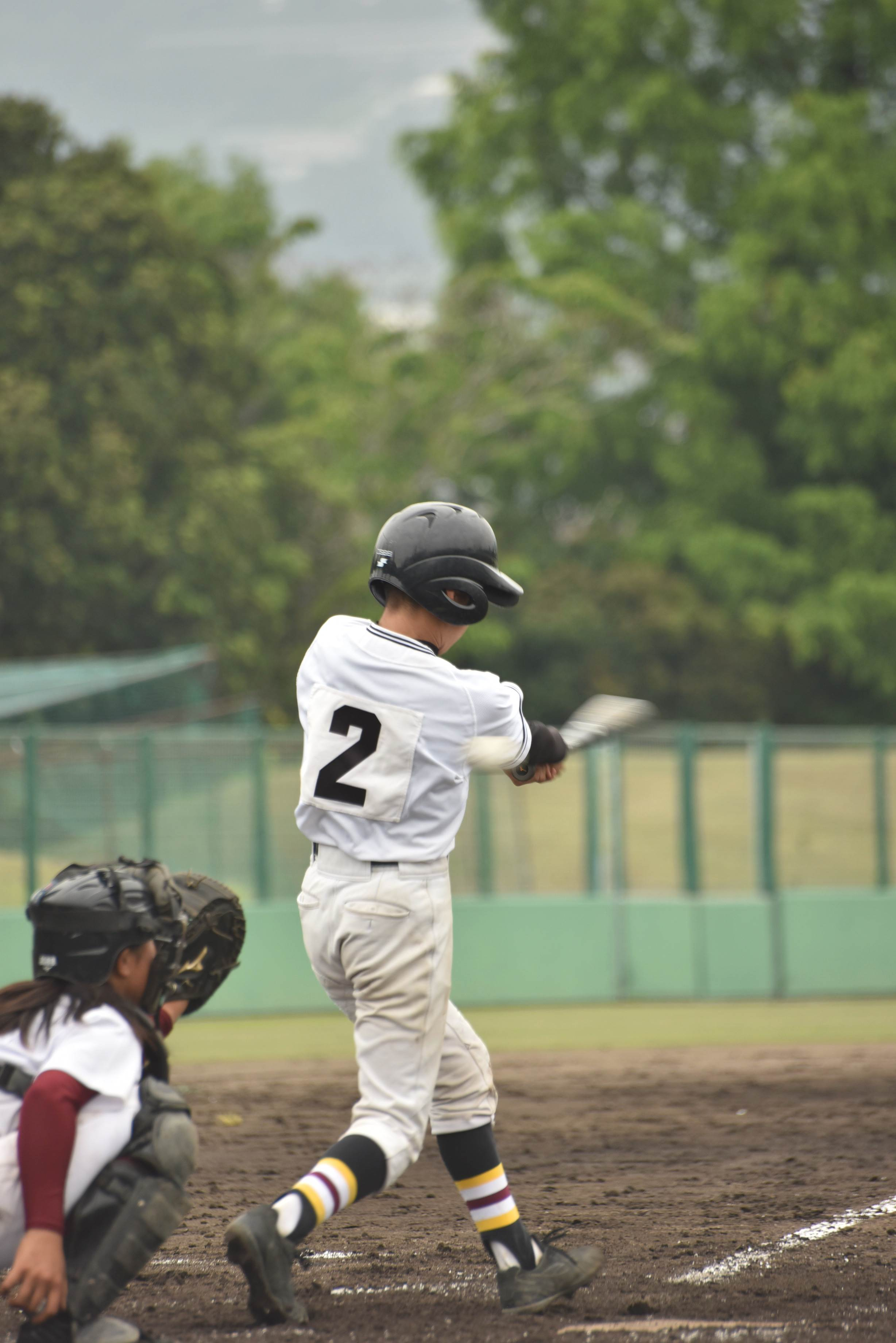 野球 (101)
