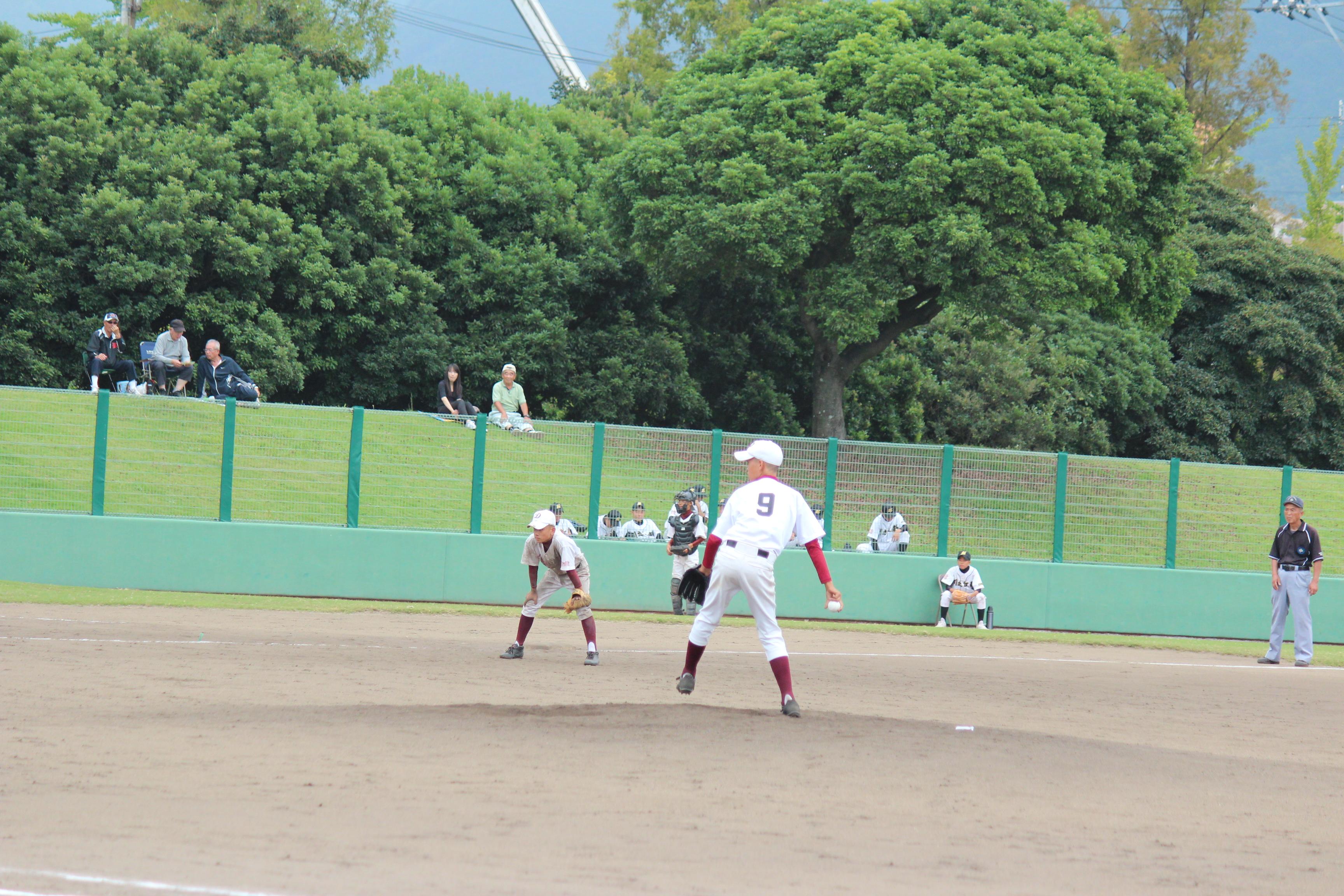野球 (305)