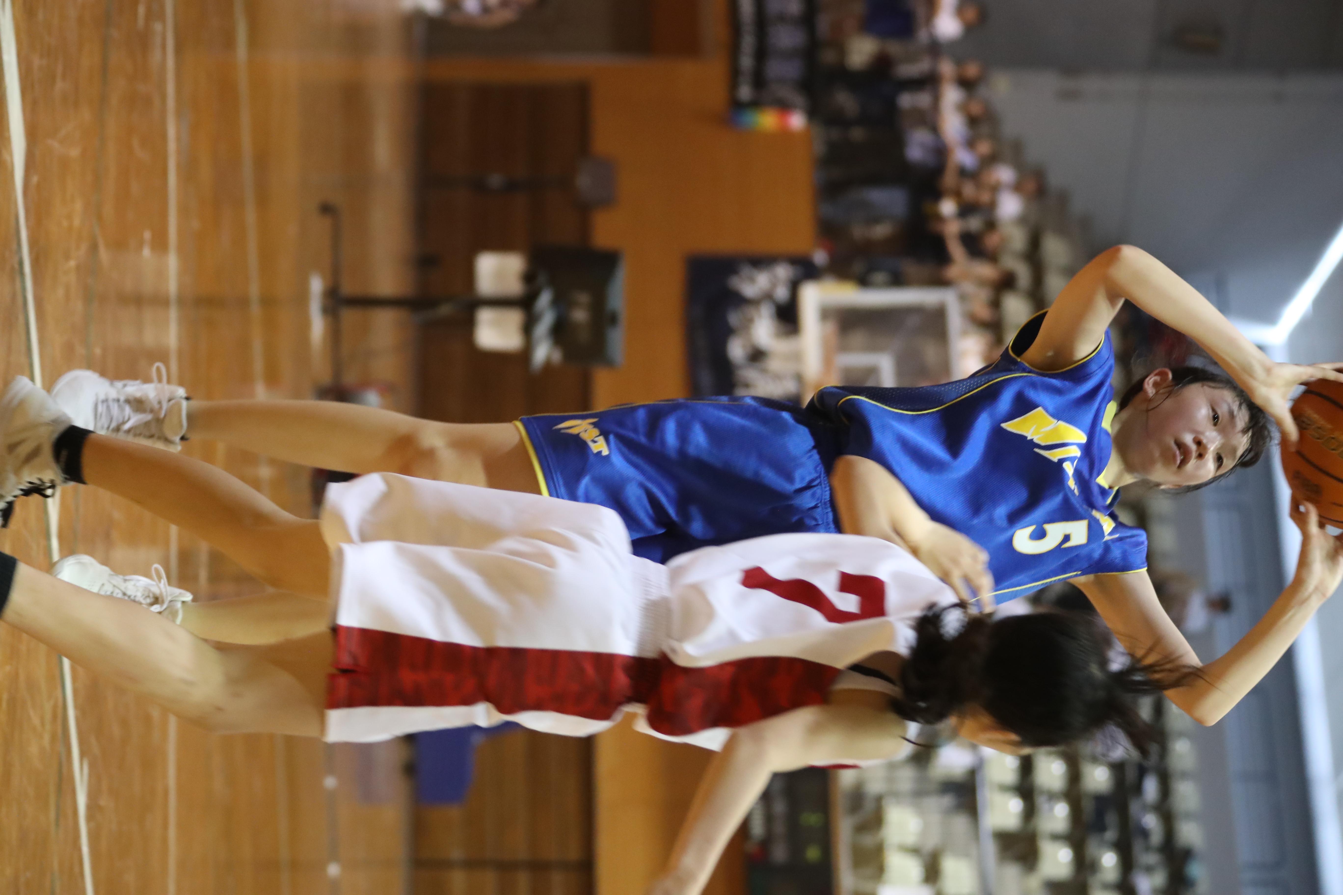 バスケット (273)