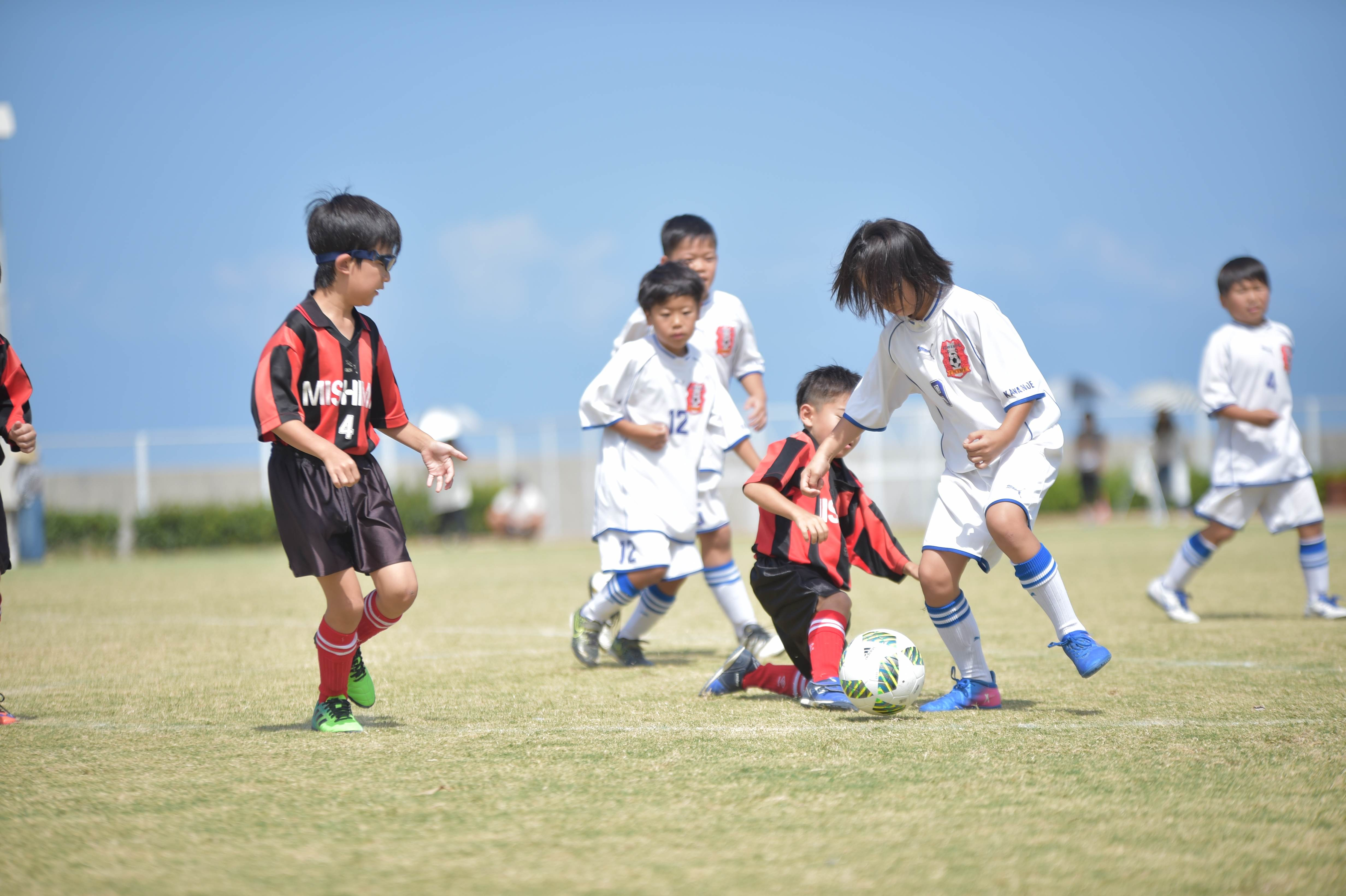 mini_soccer (307)