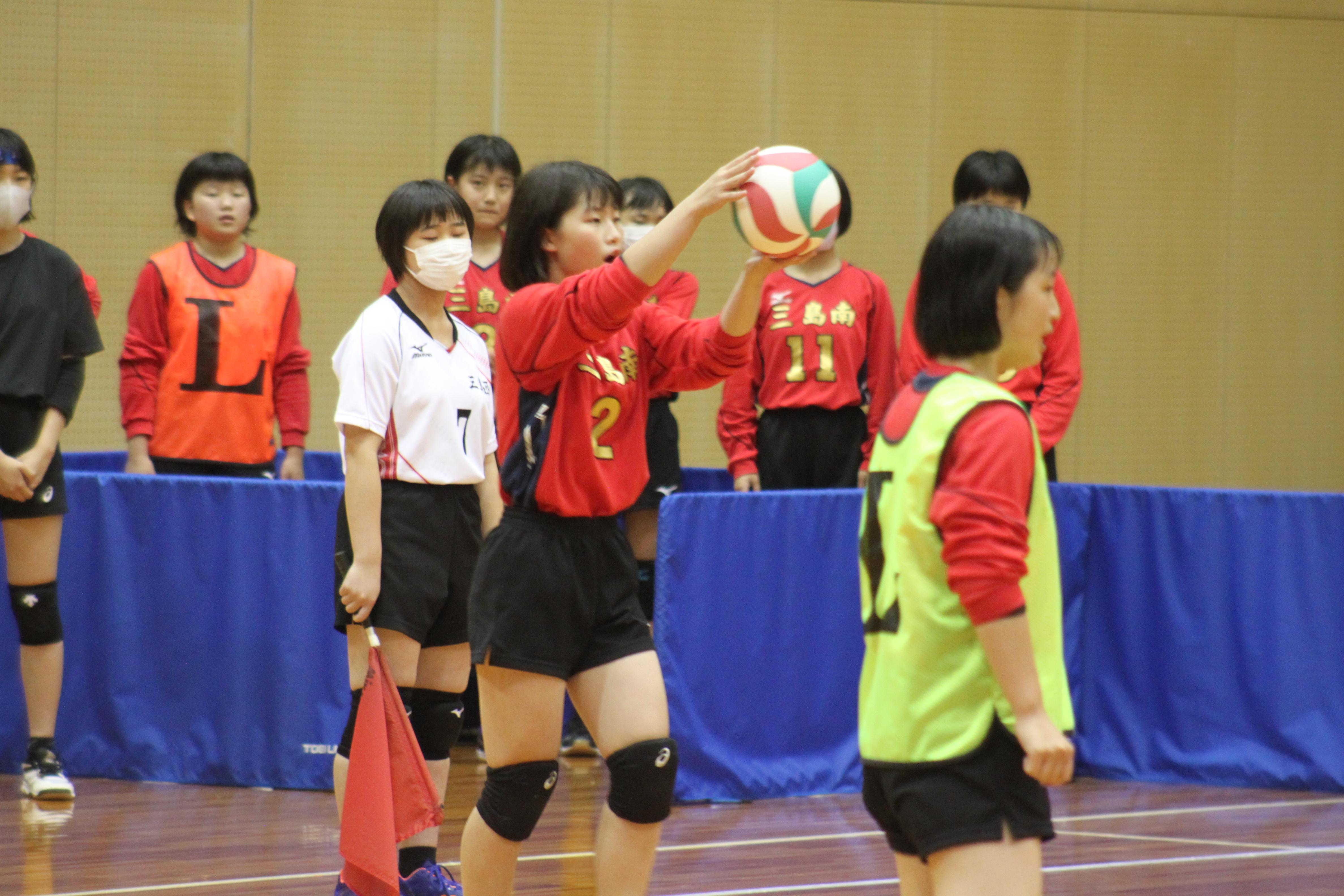 バレーボール (501)