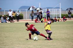 mini_soccer (123)