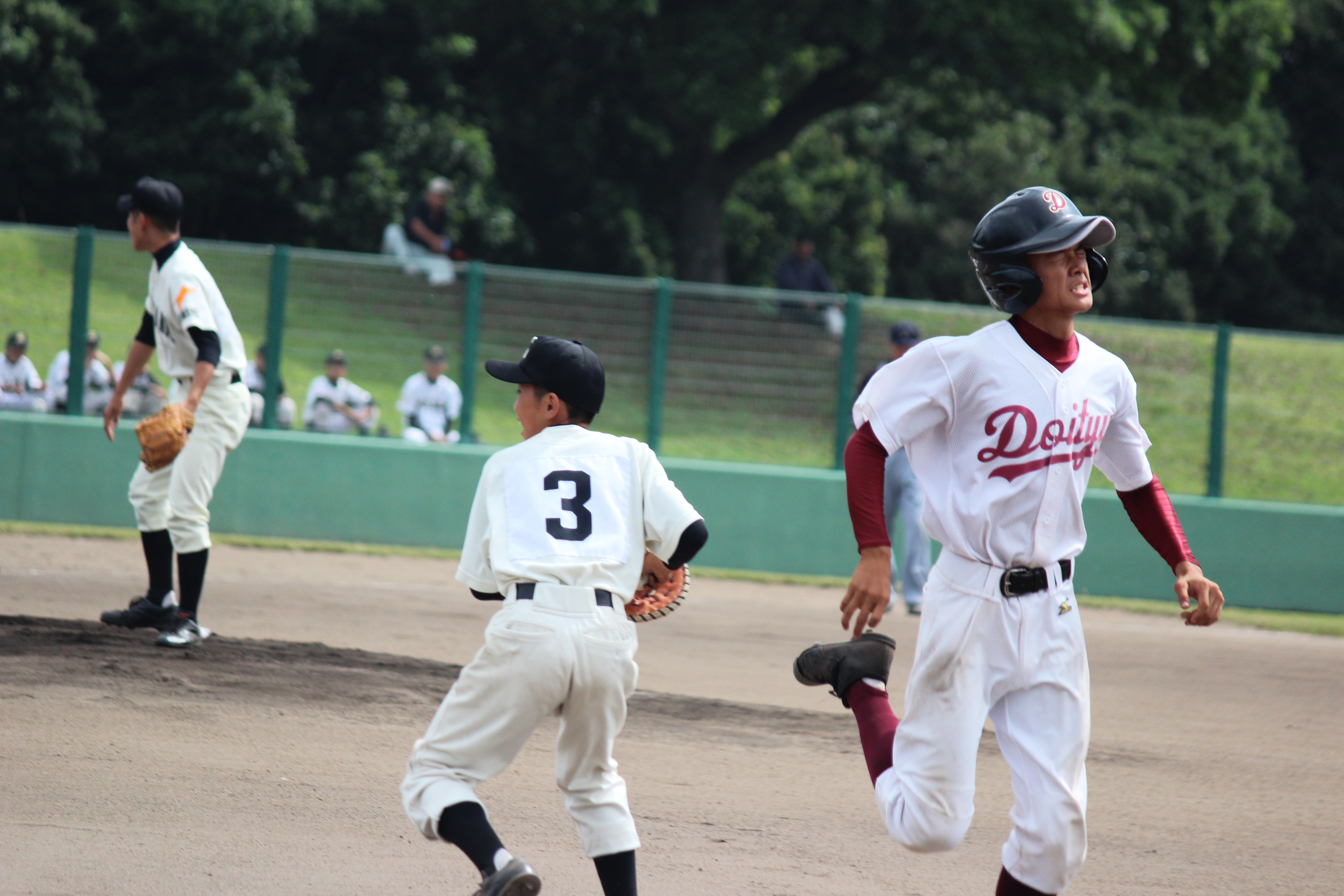 野球 (561)