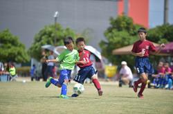 mini_soccer (404)