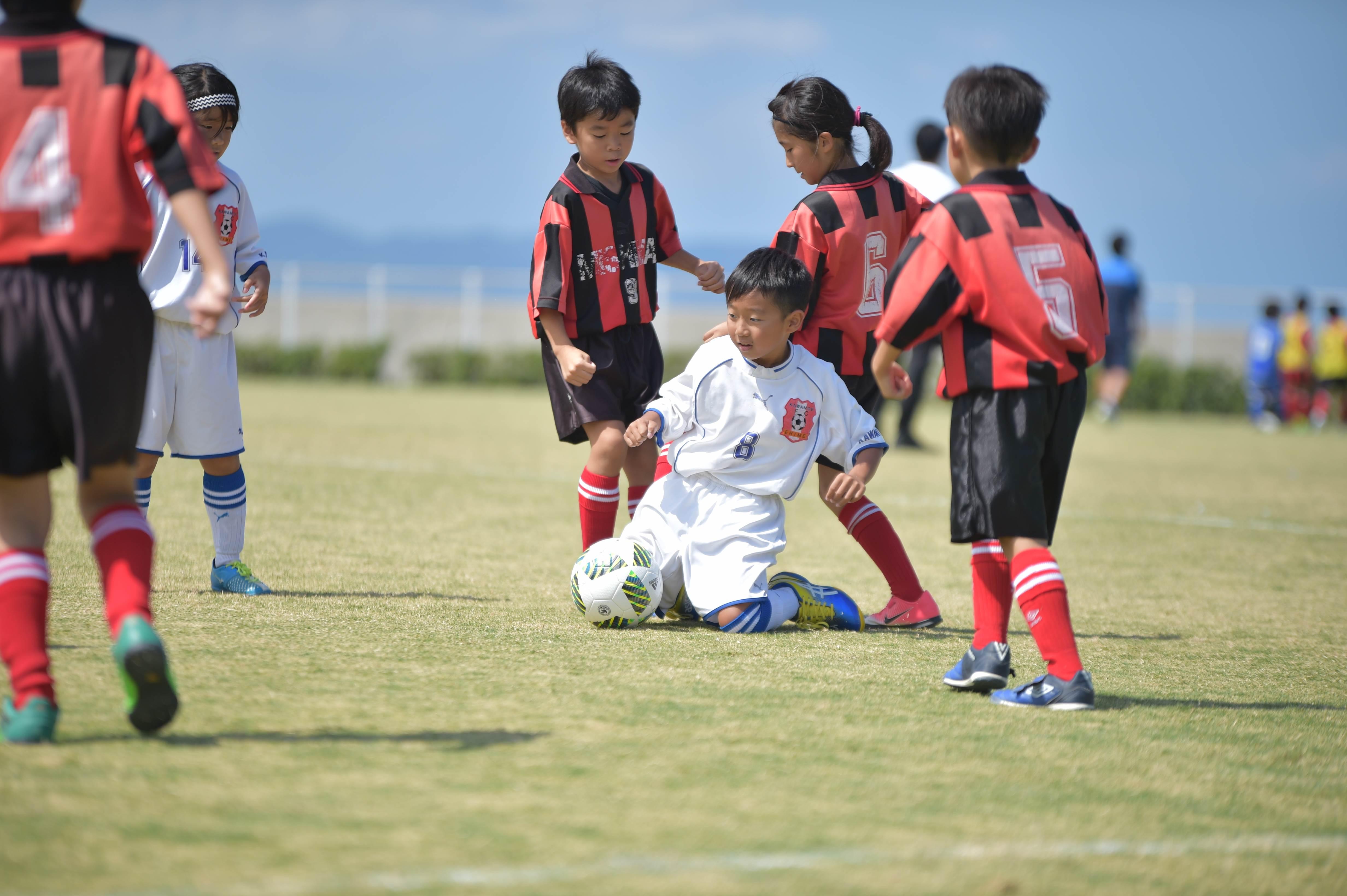mini_soccer (373)