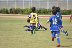mini_soccer (616)