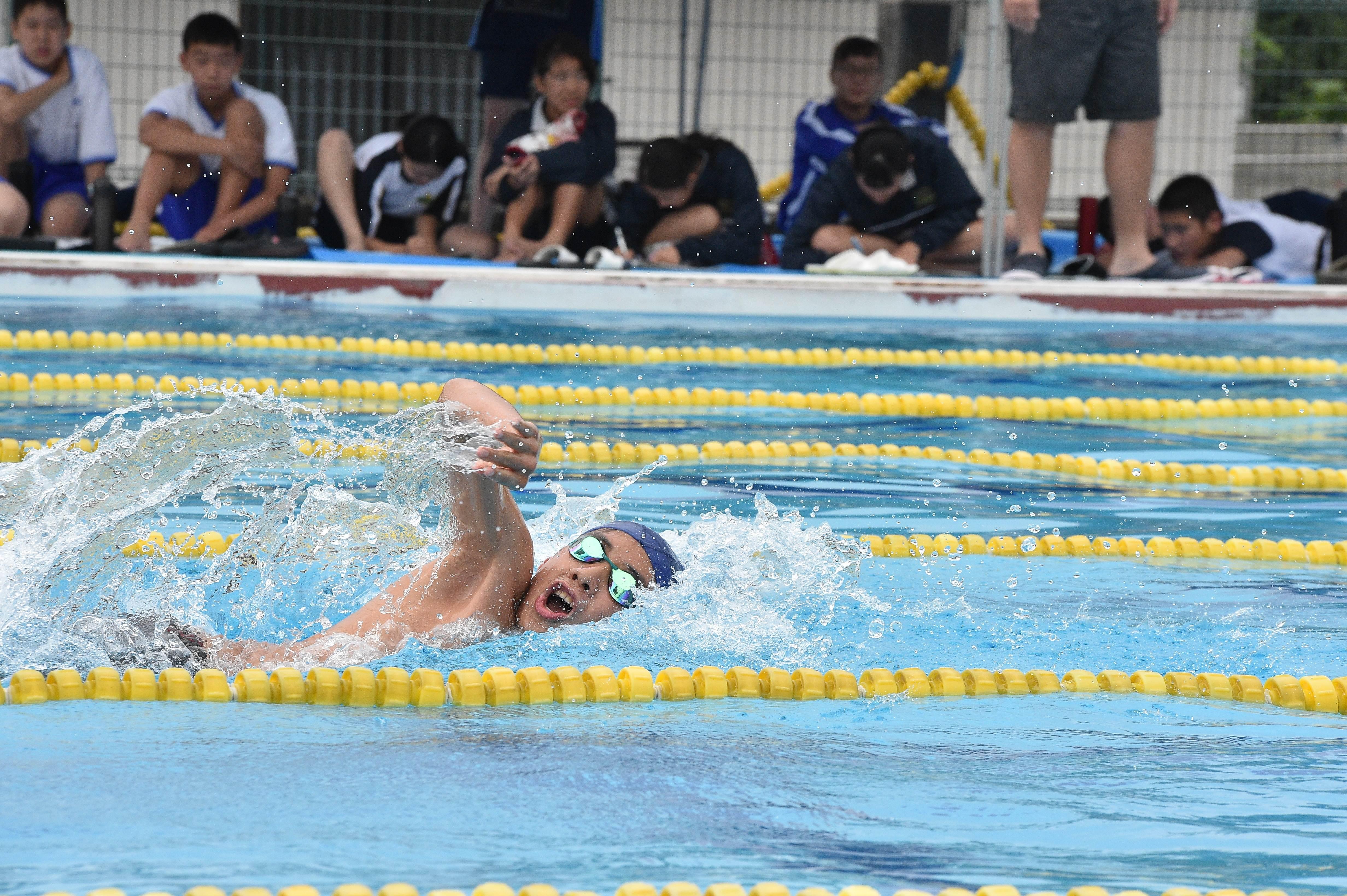 水泳 (143)