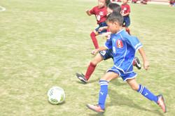 mini_soccer (574)