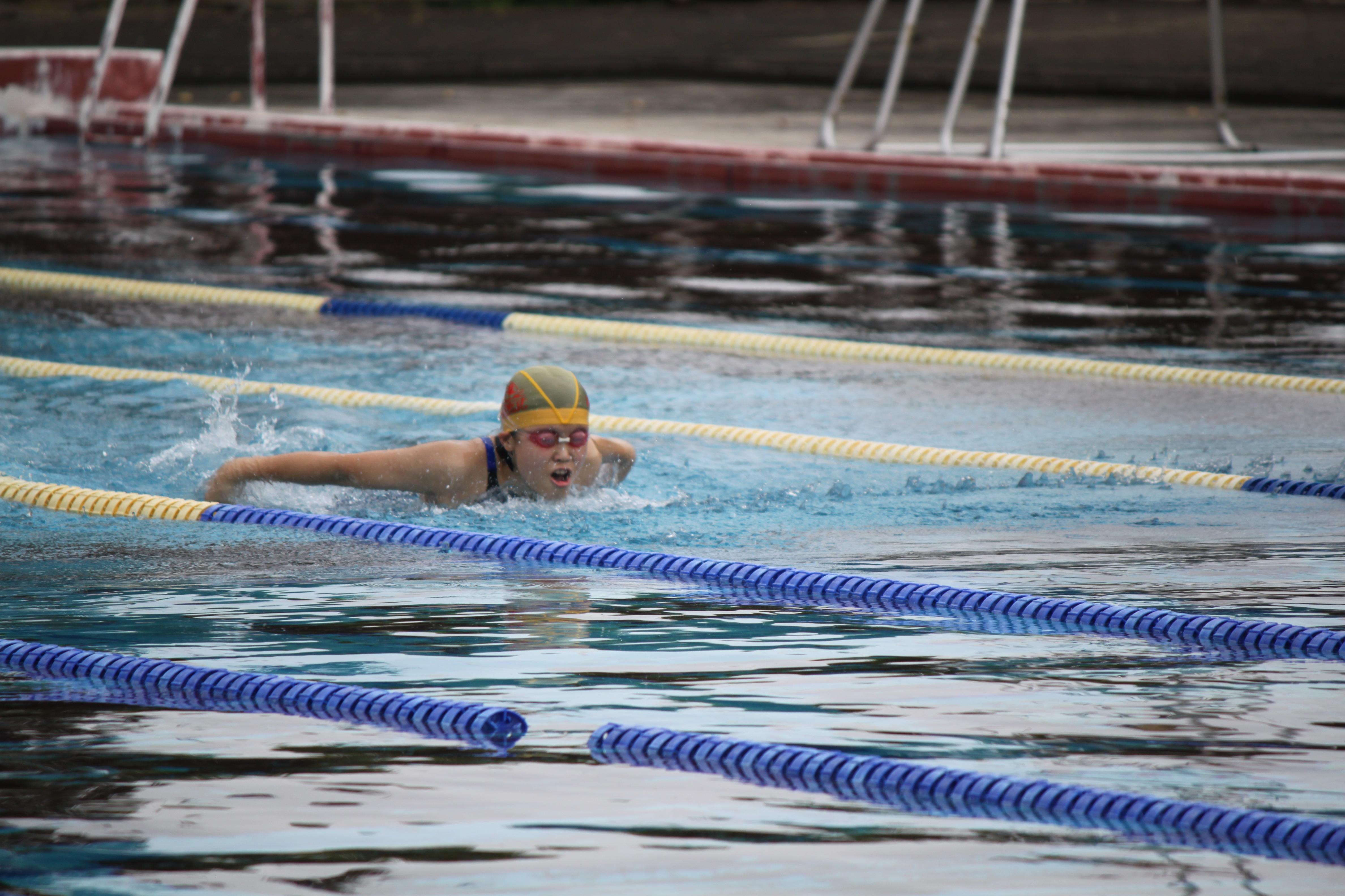 水泳競技 (3)