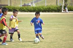 mini_soccer (643)