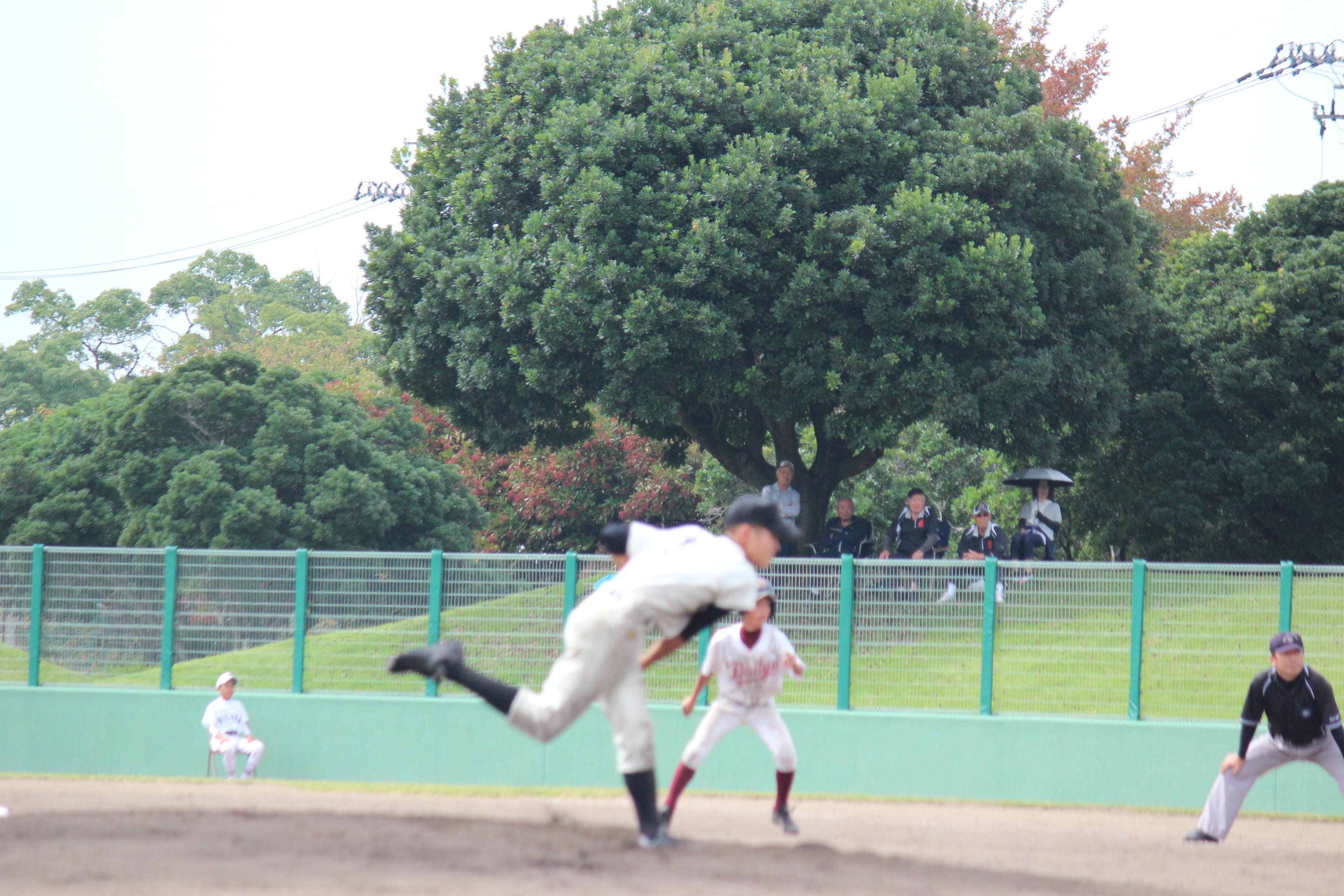 野球 (803)
