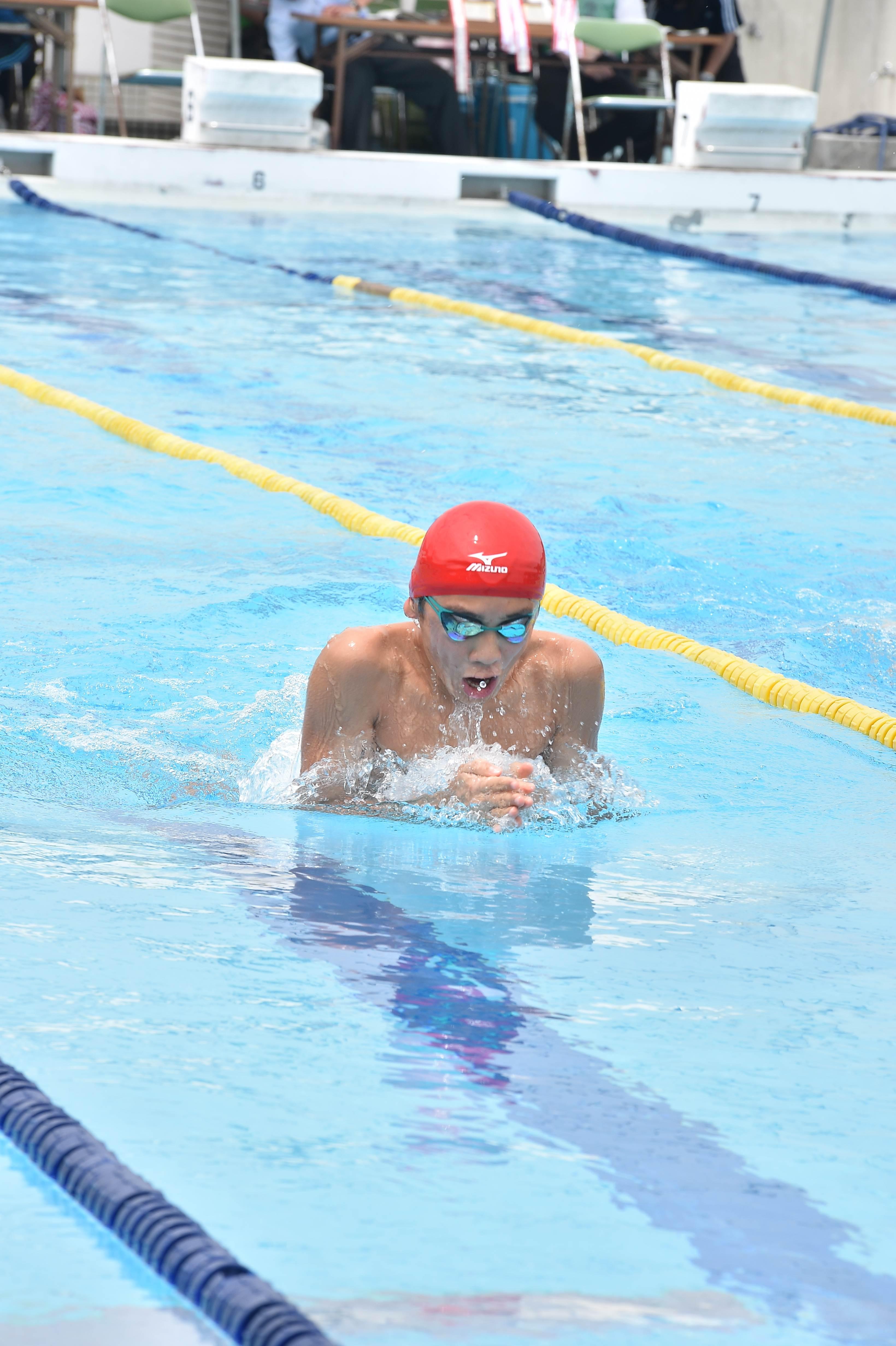水泳 (52)
