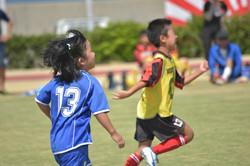 mini_soccer (636)