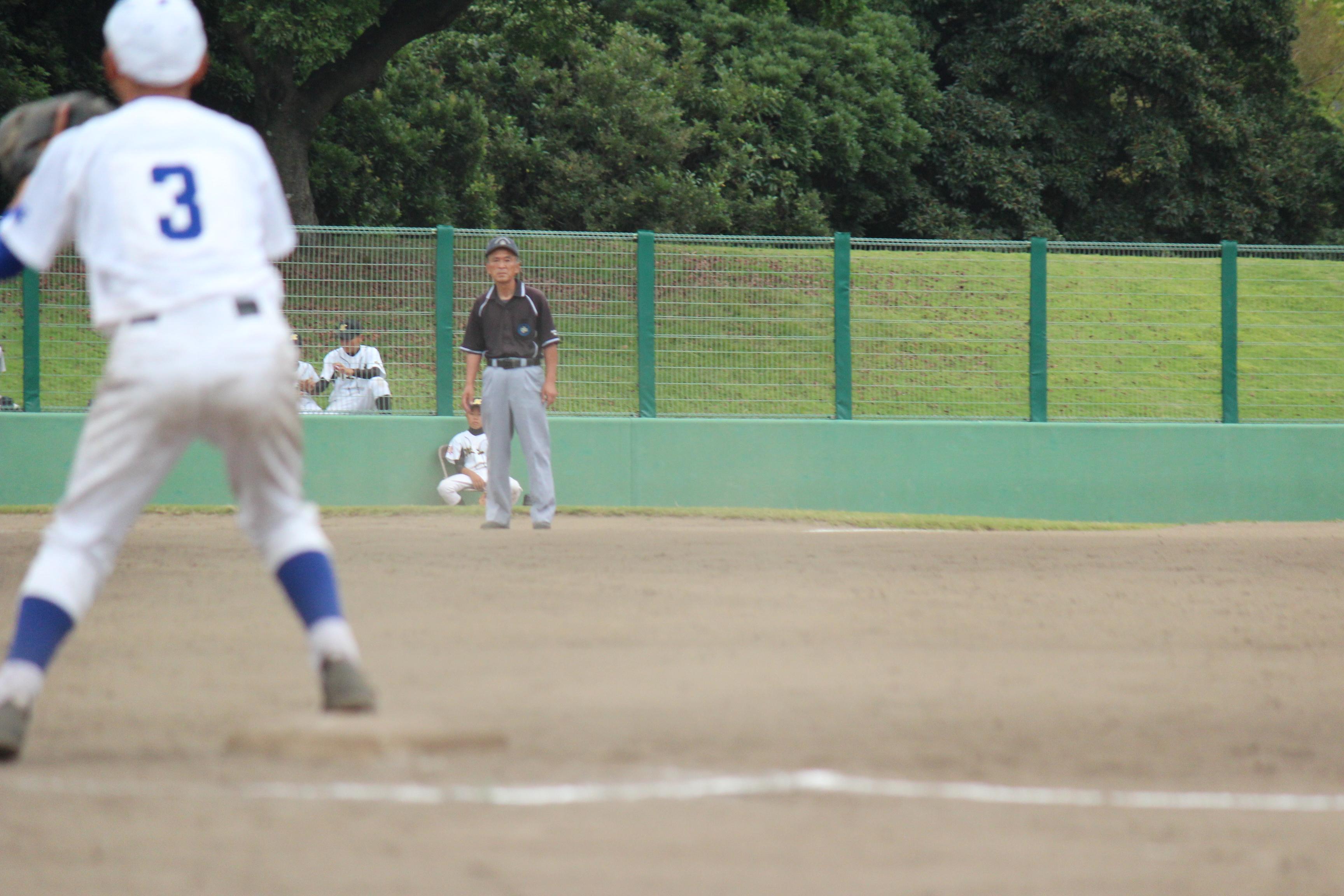 野球 (286)
