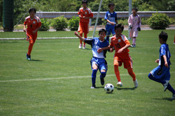 サッカー (497)
