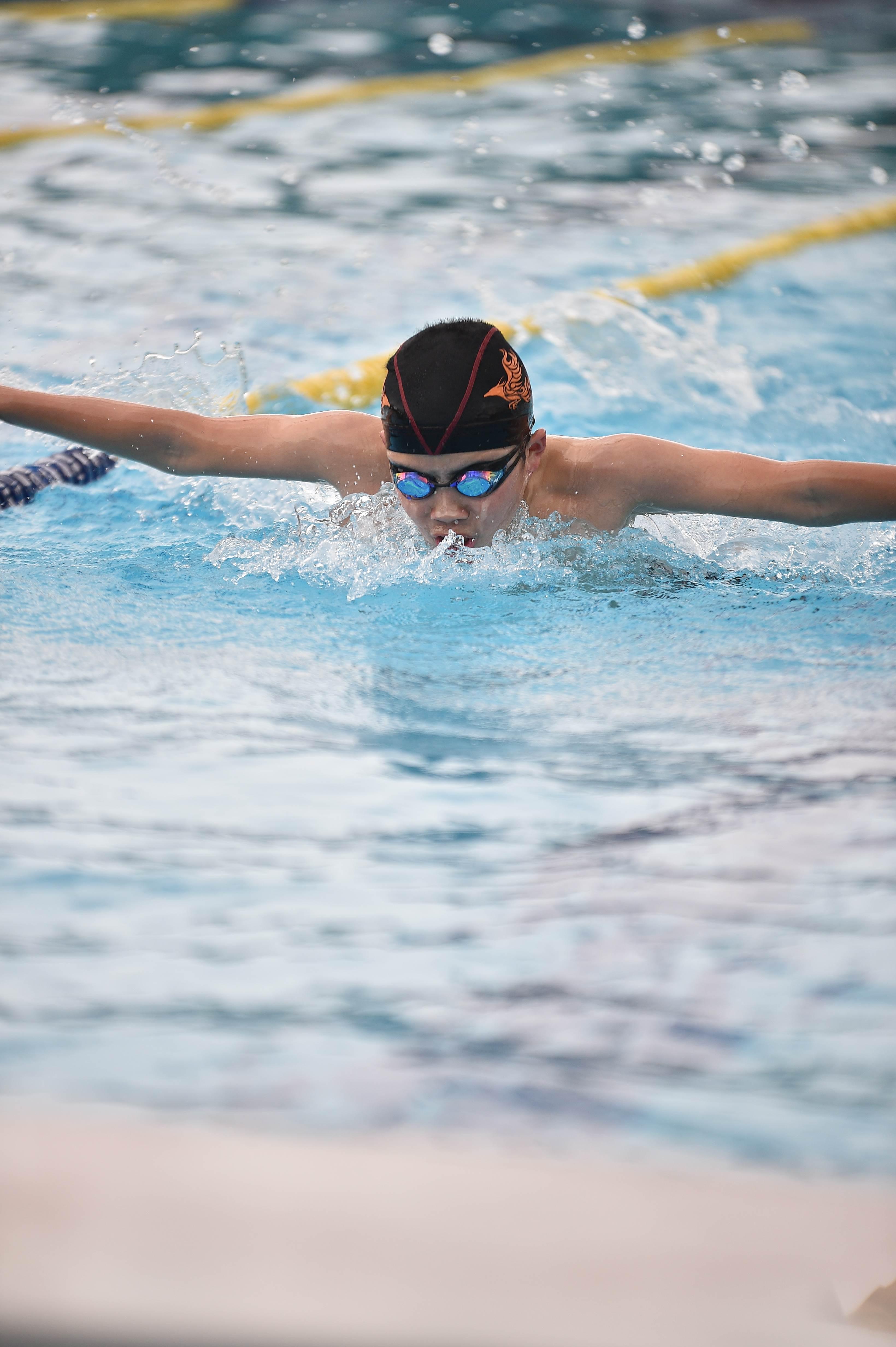 水泳 (91)