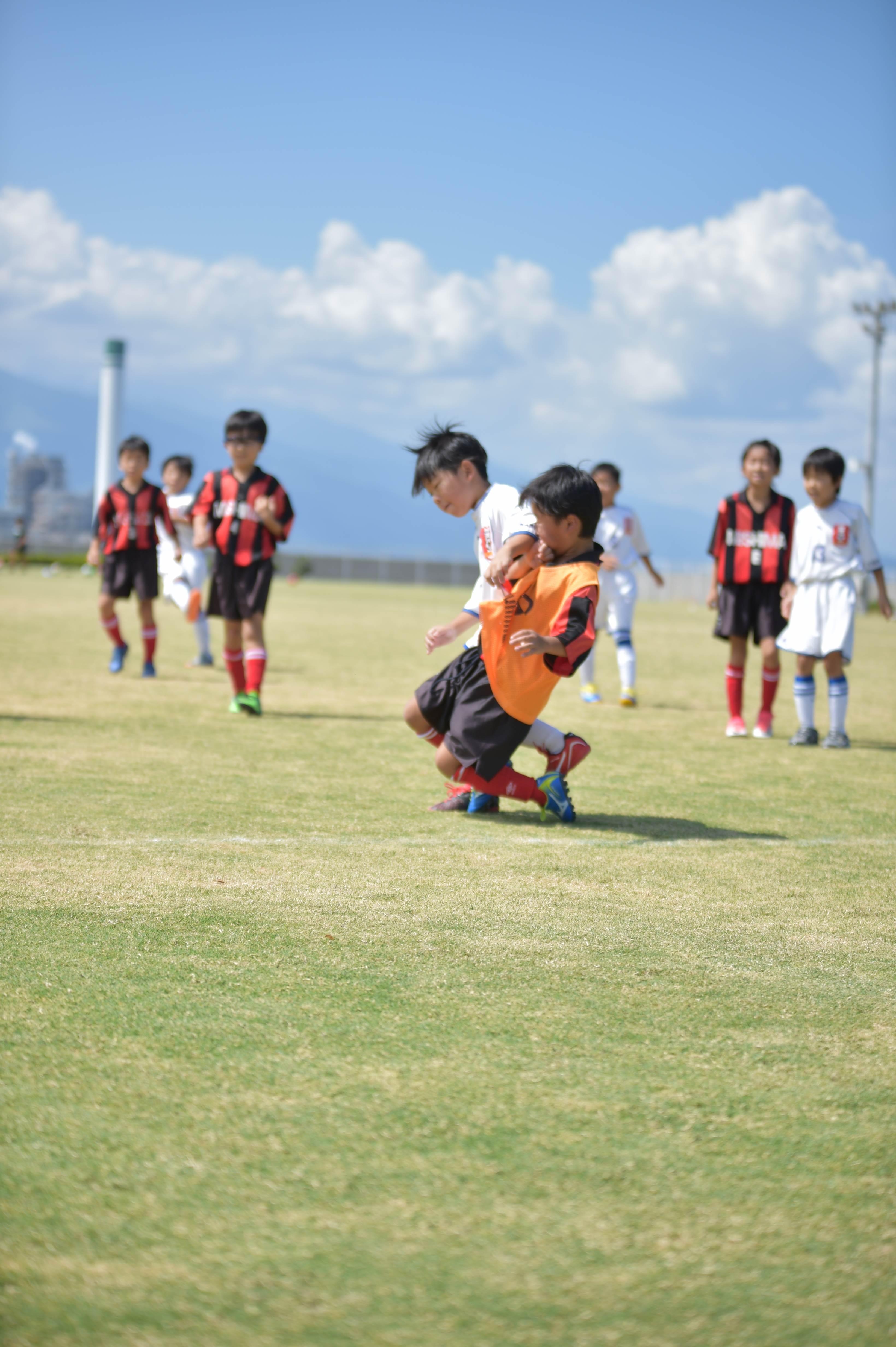 mini_soccer (376)